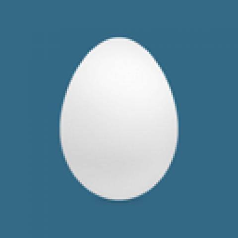 Twitter voor beginners: een ei hoort erbij