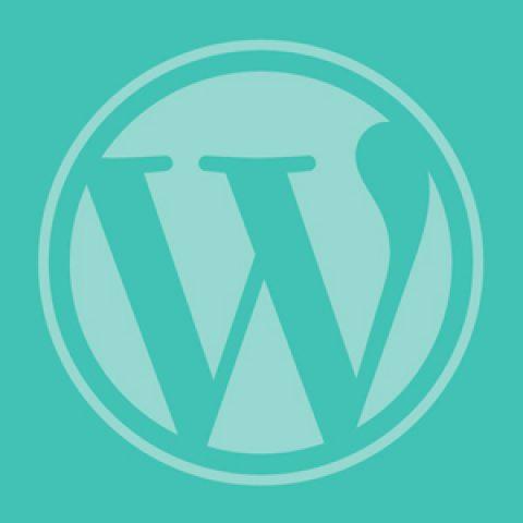 Verwijs een menu-item naar een andere website in WordPress